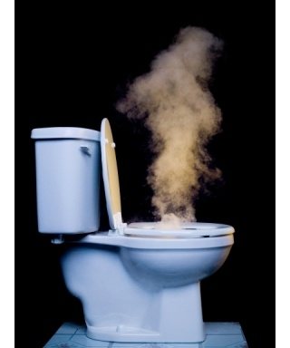 Study Most Toilets Spray Germs If Flushed With Open Lid