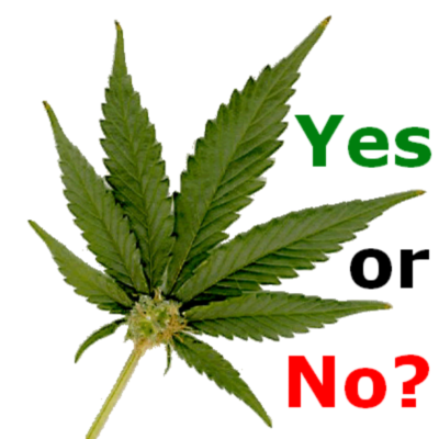 legalize weed yes or no They insist that marijuana use is no more dangerous than alcohol use, and might be less so however, critics of the proposals say that legalizing marijuana would increase its usage, particularly.