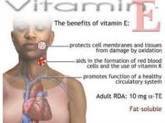 vitamin_e-resized-600.jpg