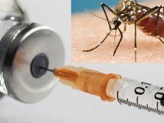 malaria-vaccine